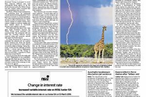 Giraffe lightning